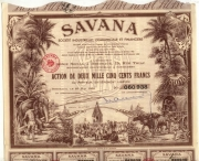 TOP DECO  => SAVANA (PONDICHERY)
