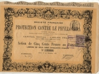 PROTECTION CONTRE LA PHYLLOXERA